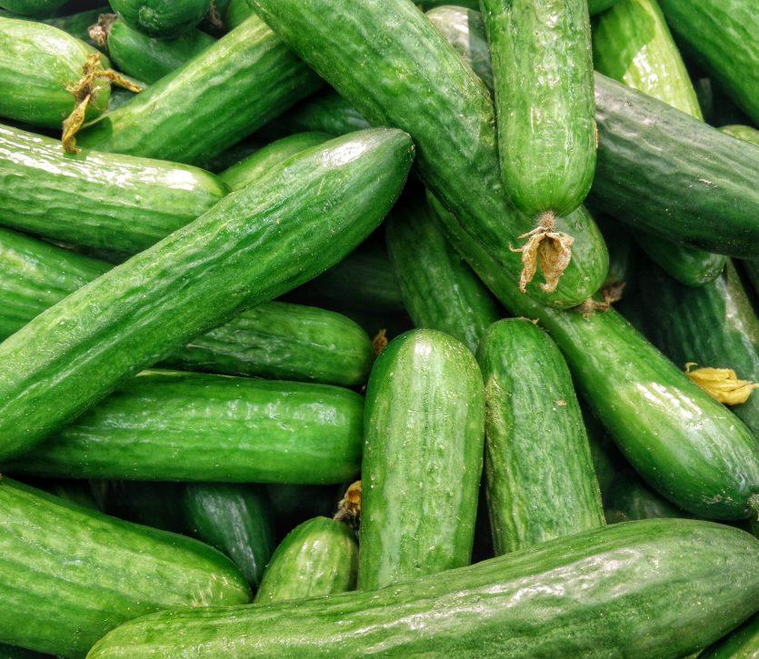L'est canadien n'est pas touché par L'Éclosion d'infection à la salmonelle des concombres anglais long's Thumbnail